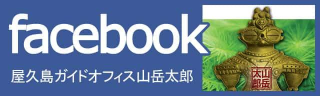 屋久島ガイドオフィス山岳太郎のフェイスブックページで最新情報をチェックなのだ!