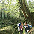 白谷雲水峡~縄文杉(一泊二日)